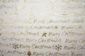 Organtyna - złoty napis na białym tle