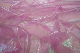 Organtyna tęczowa - fioletowa