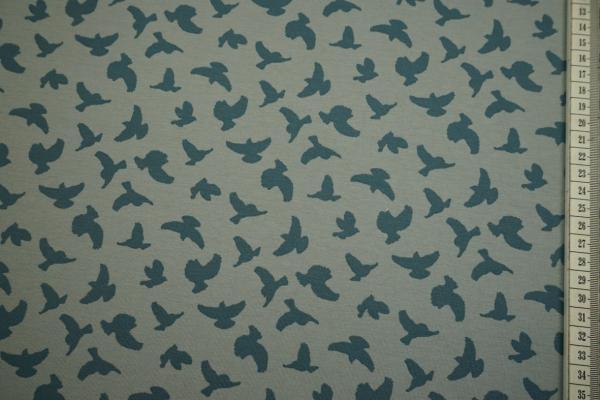 Dzianina - ptaki